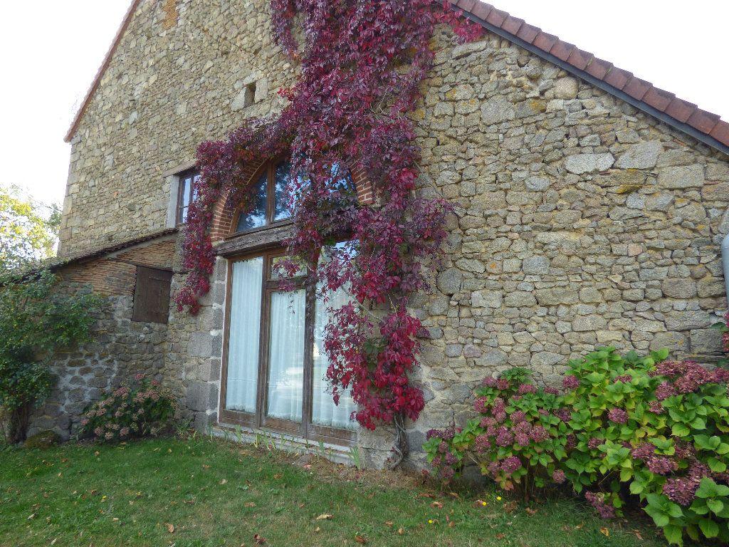 Maison à vendre 8 190m2 à Saint-Julien-le-Châtel vignette-2