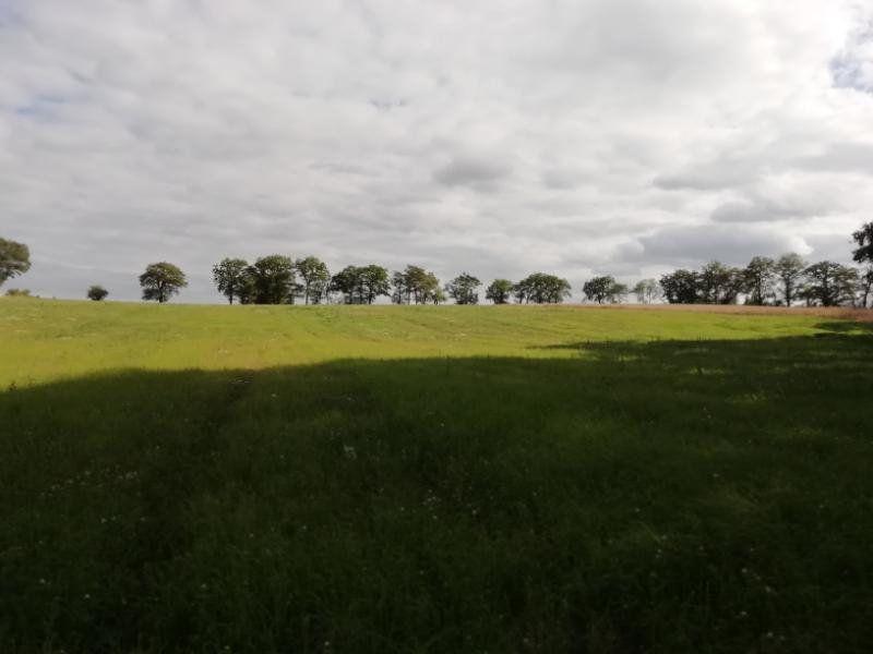 Terrain à vendre 0 85075m2 à Toulx-Sainte-Croix vignette-6