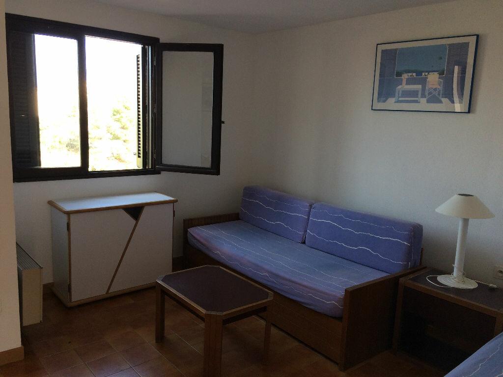 Appartement à vendre 2 30.39m2 à Grosseto-Prugna vignette-7