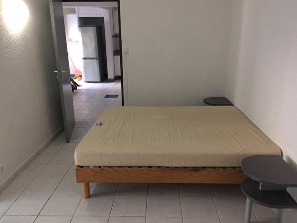 Appartement à louer 2 40.15m2 à Albitreccia vignette-7