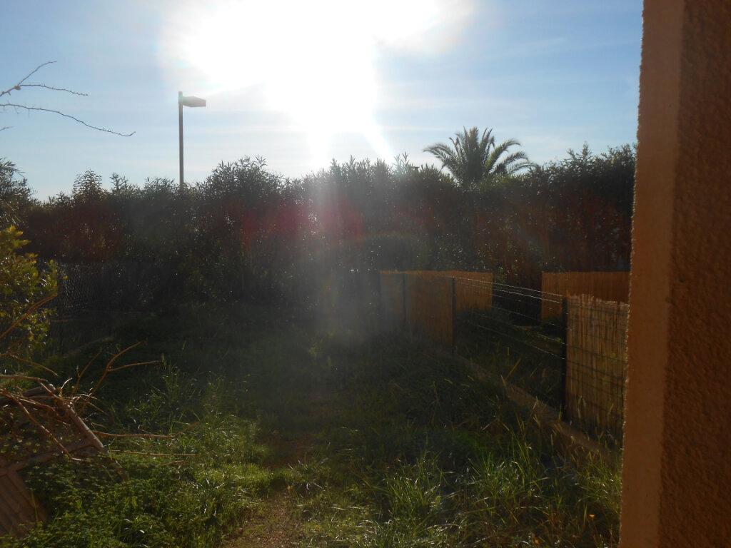 Appartement à louer 1 26.57m2 à Ajaccio vignette-4