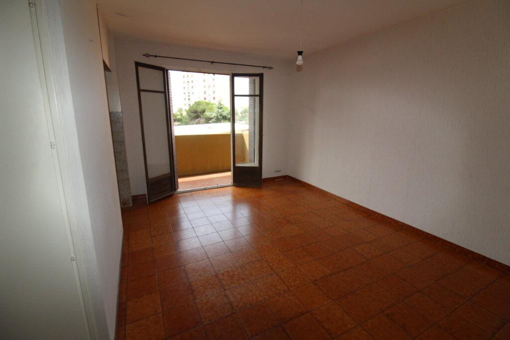 Appartement à louer 1 27m2 à Ajaccio vignette-1