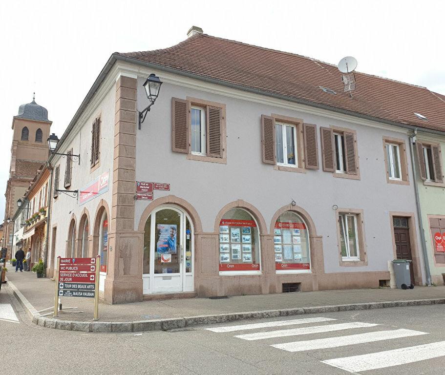 Appartement à louer 3 61m2 à Neuf-Brisach vignette-6