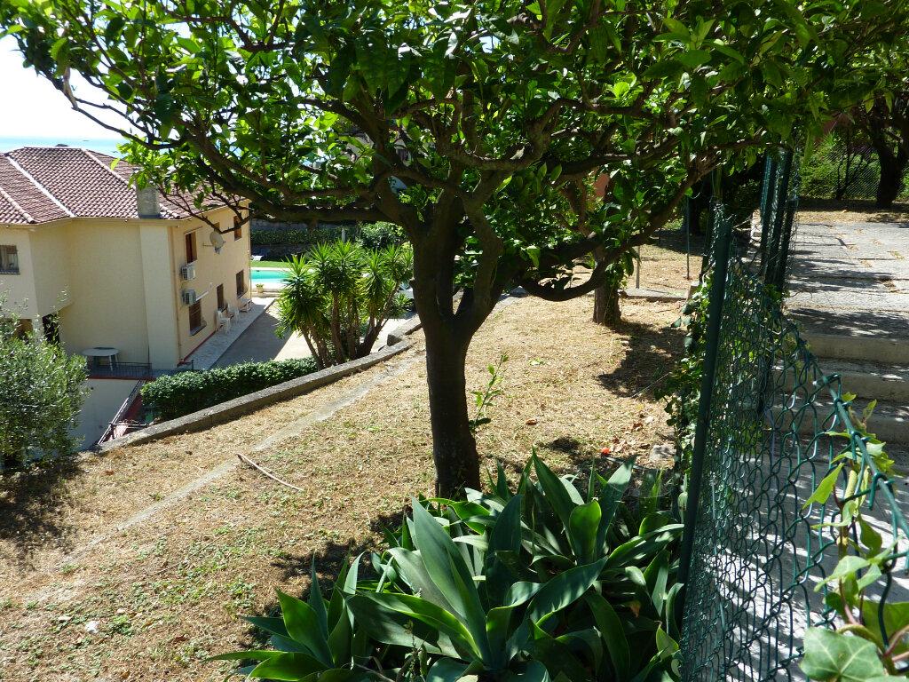 Appartement à louer 2 48.71m2 à Roquebrune-Cap-Martin vignette-3