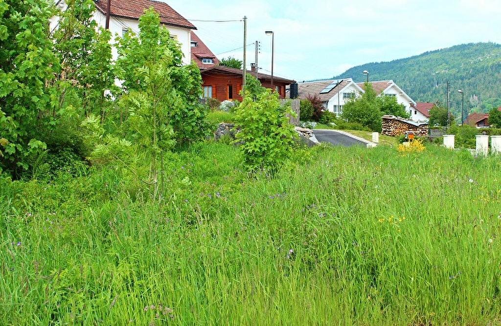 Terrain à vendre 0 663m2 à Gérardmer vignette-2