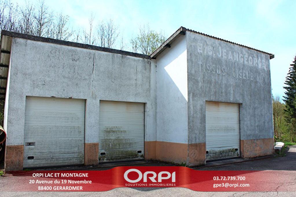 Immeuble à vendre 0 70m2 à La Bresse vignette-1