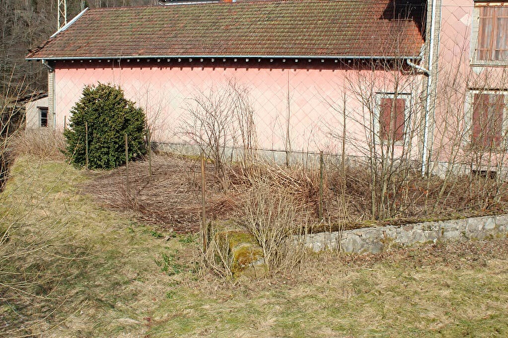 Maison à vendre 6 100m2 à Saulxures-sur-Moselotte vignette-9
