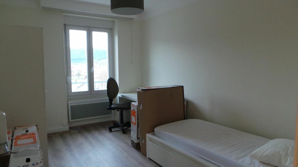 Appartement à louer 3 112m2 à Saint-Dié-des-Vosges vignette-5