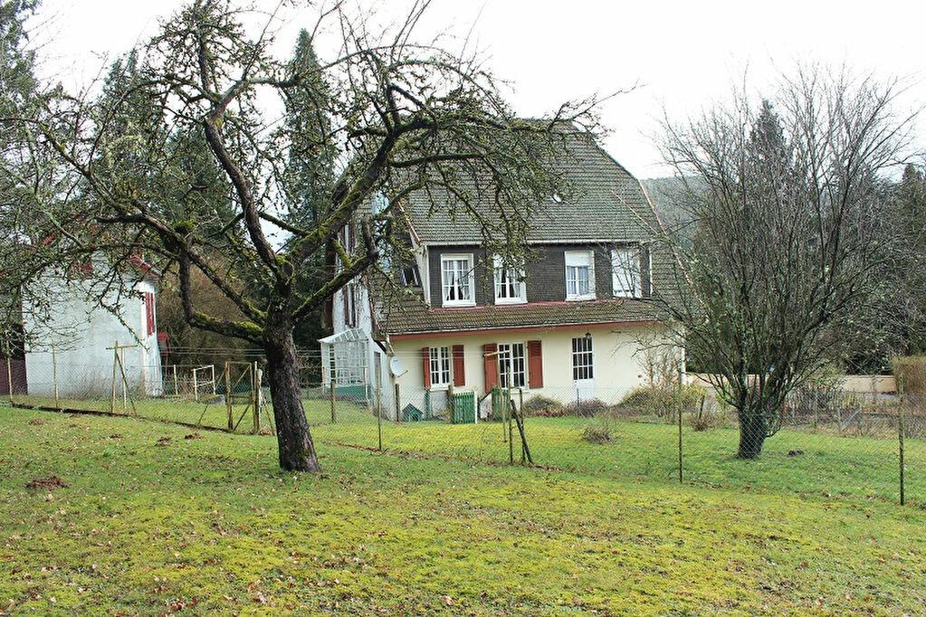Maison à vendre 14 461m2 à Brouvelieures vignette-3
