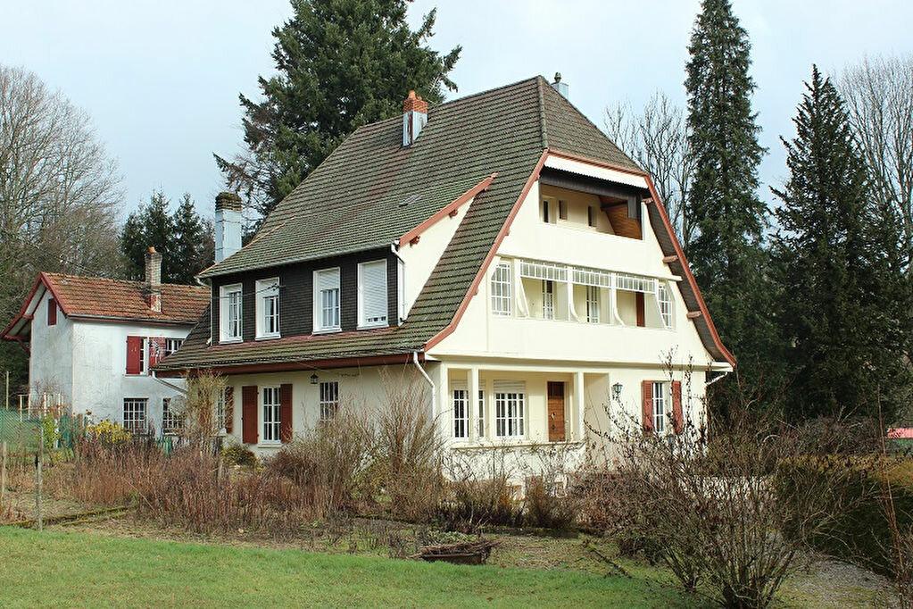 Maison à vendre 14 461m2 à Brouvelieures vignette-10