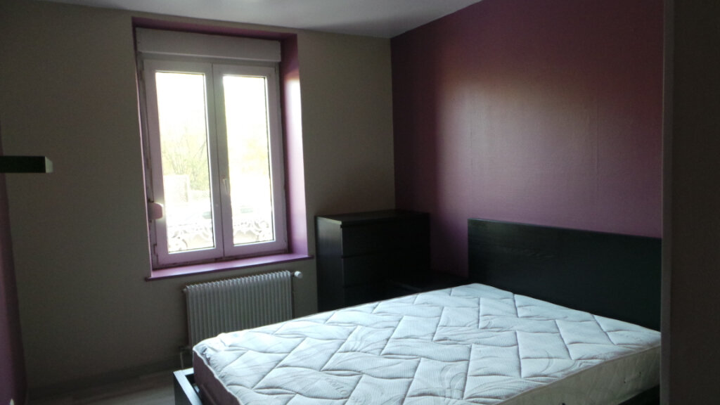 Appartement à louer 3 57m2 à Saint-Dié-des-Vosges vignette-3