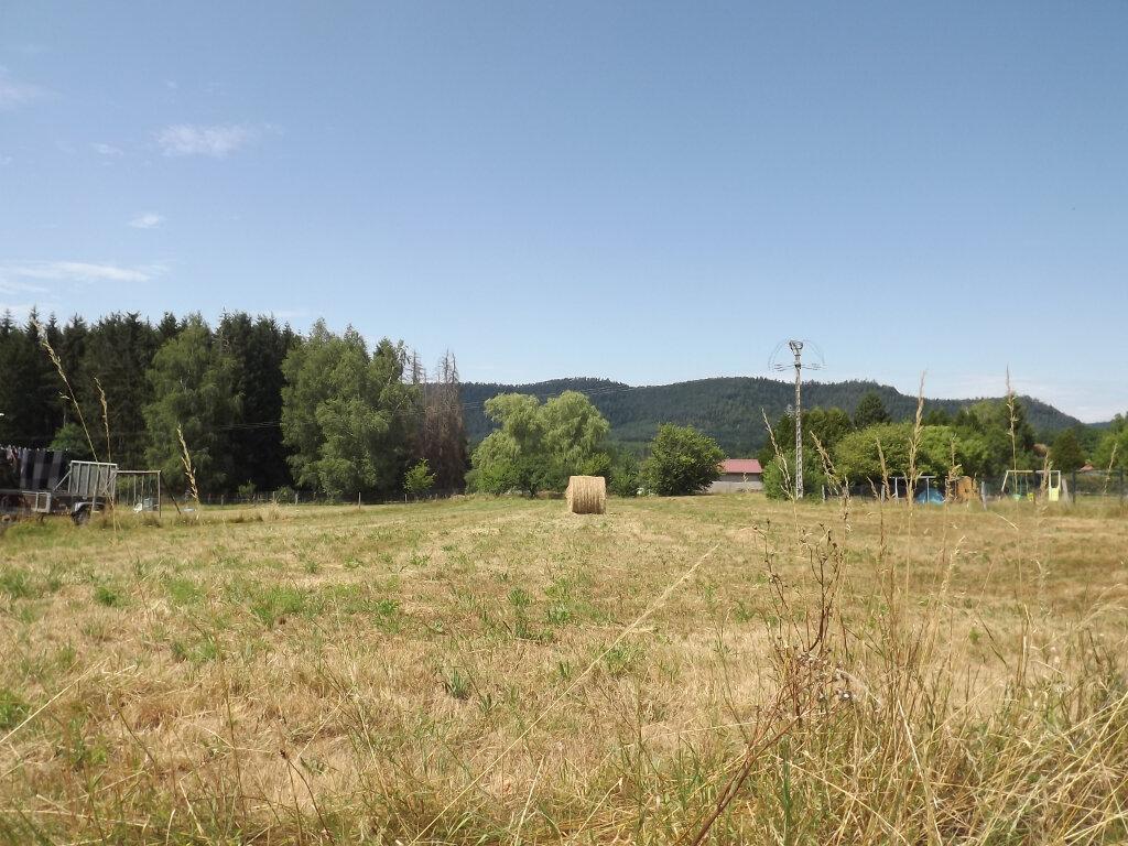 Terrain à vendre 0 2195m2 à Étival-Clairefontaine vignette-2