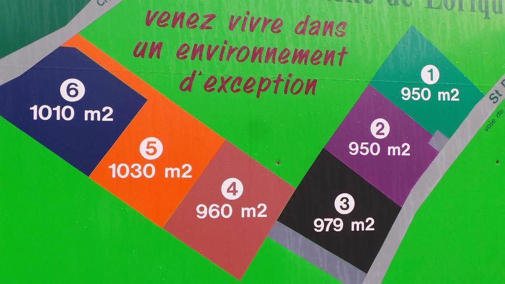 Terrain à vendre 0 950m2 à Saint-Dié-des-Vosges vignette-2
