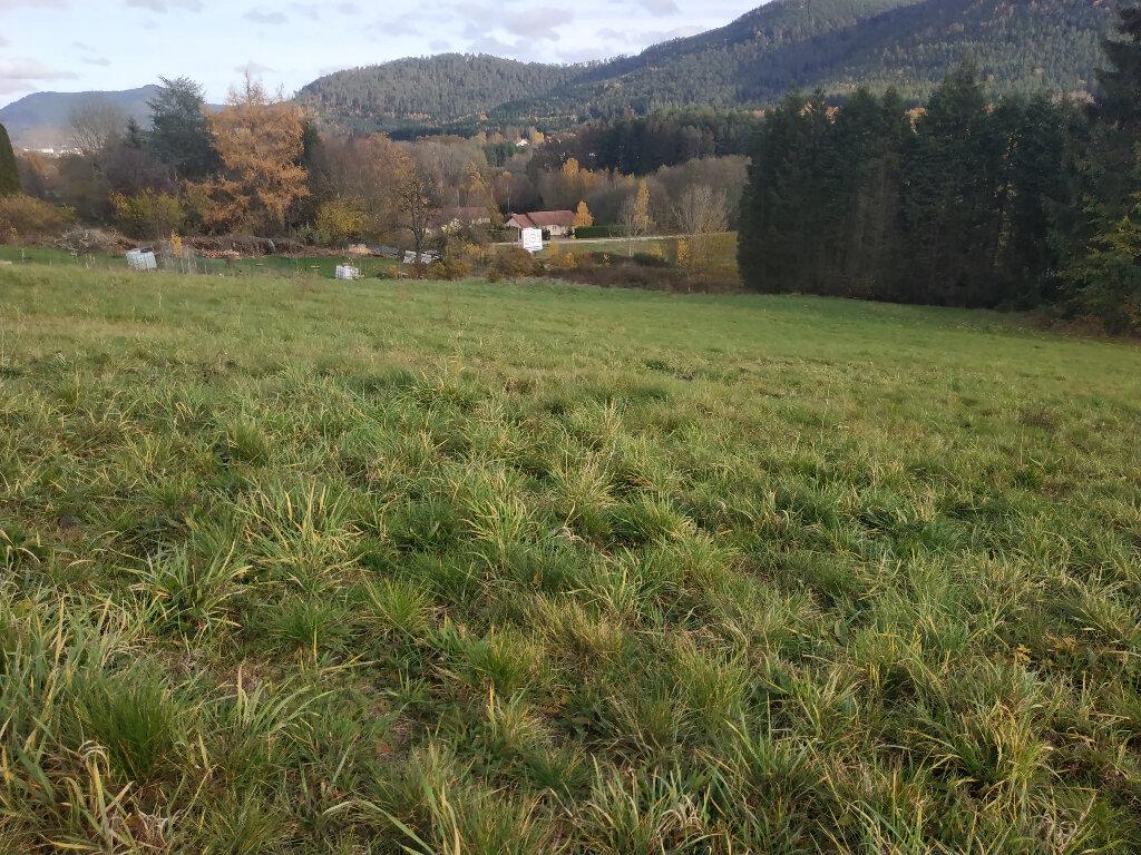 Terrain à vendre 0 1030m2 à Saint-Dié-des-Vosges vignette-2