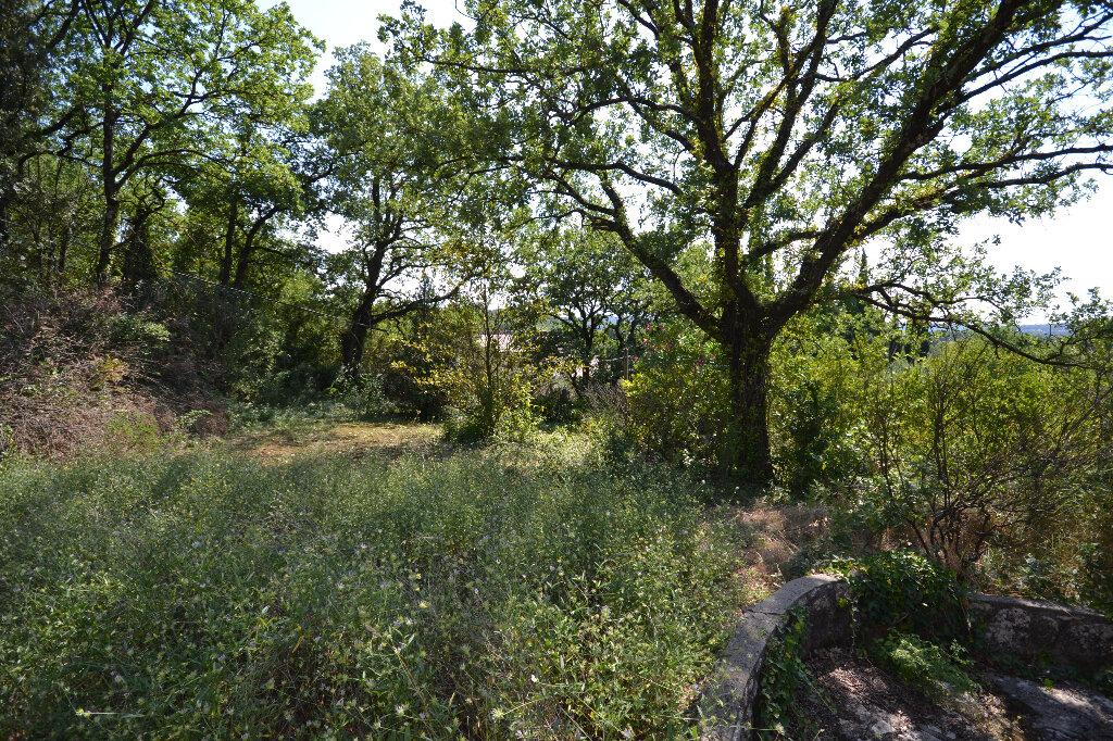 Terrain à vendre 0 7695m2 à Vers-Pont-du-Gard vignette-6
