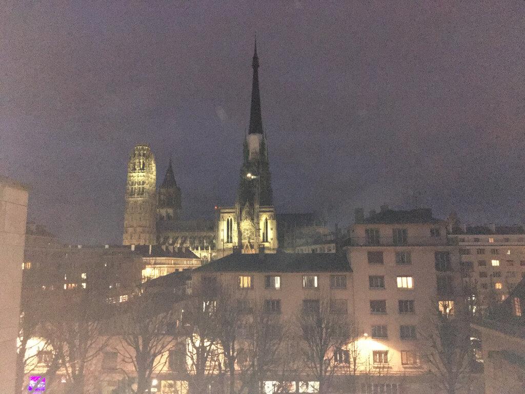 Appartement à vendre 2 46m2 à Rouen vignette-9