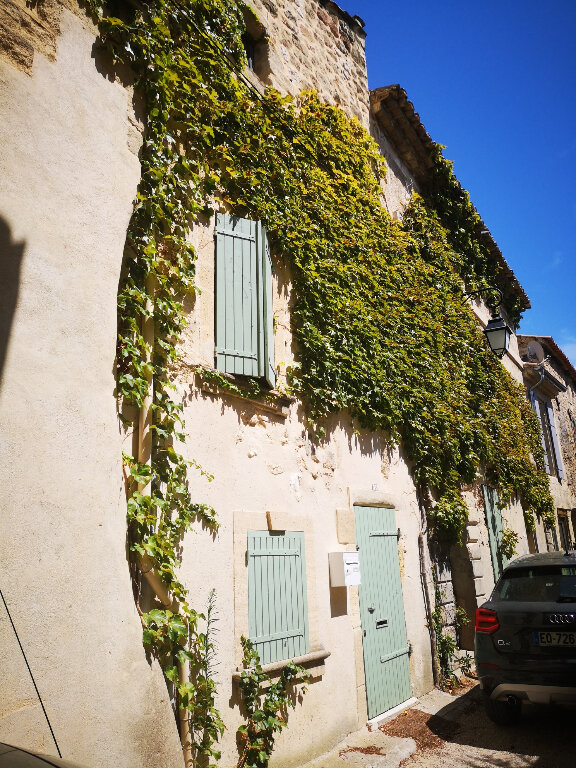 Maison à louer 3 62m2 à Saint-Hilaire-d'Ozilhan vignette-7