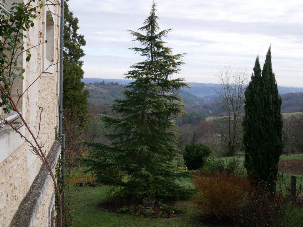 Maison à vendre 6 165m2 à Rouffignac-Saint-Cernin-de-Reilhac vignette-3