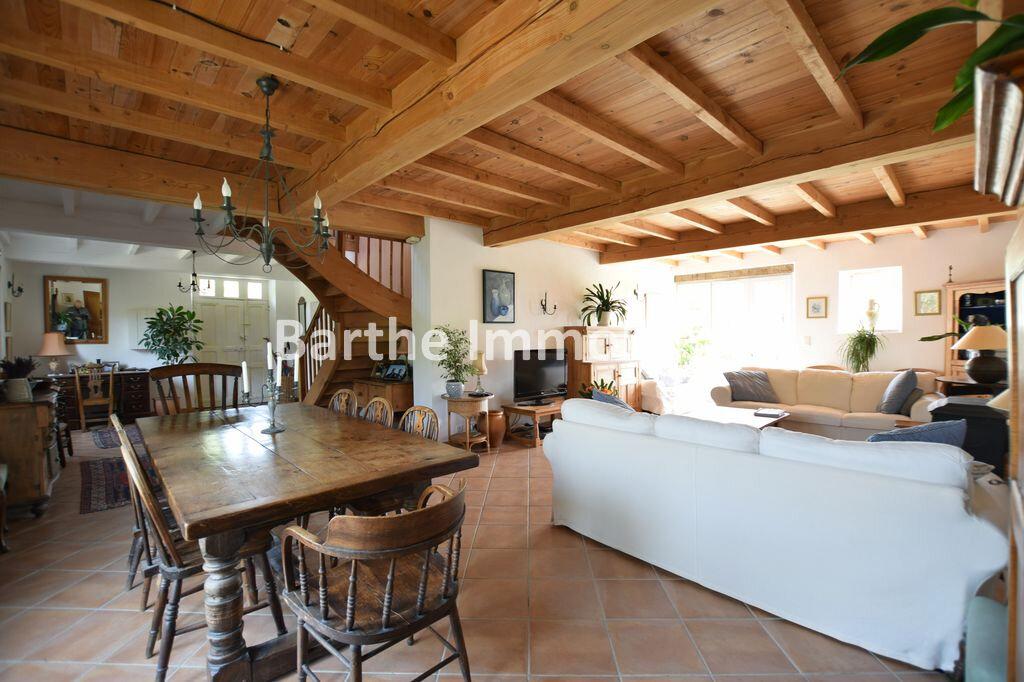 Maison à vendre 6 190m2 à Saint-Urcisse vignette-2