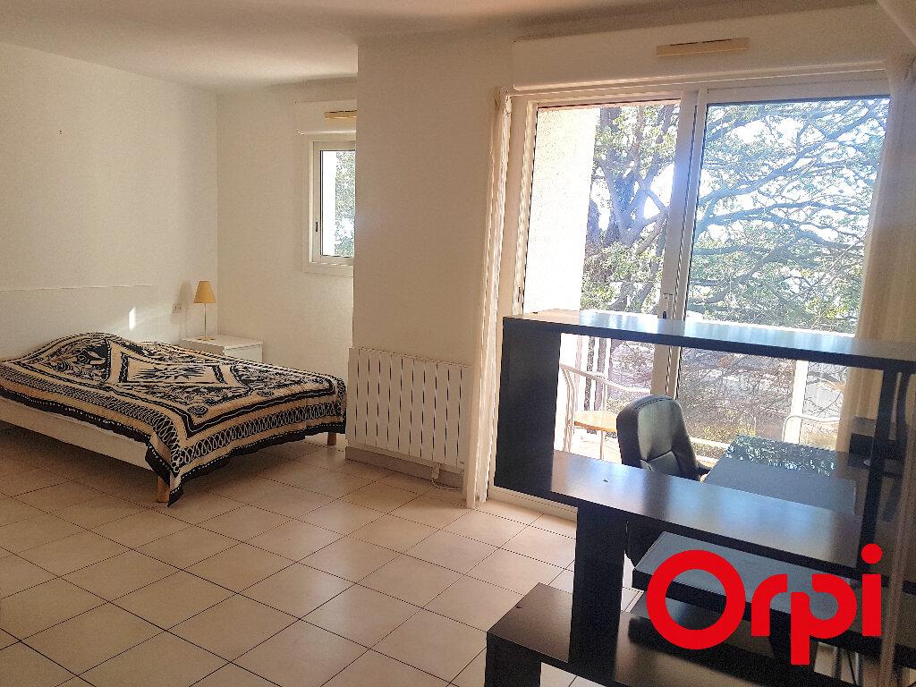 Appartement à vendre 1 23.84m2 à Perpignan vignette-1