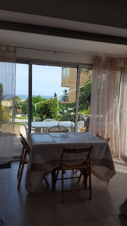 Appartement à louer 2 31.6m2 à Villeneuve-Loubet vignette-5