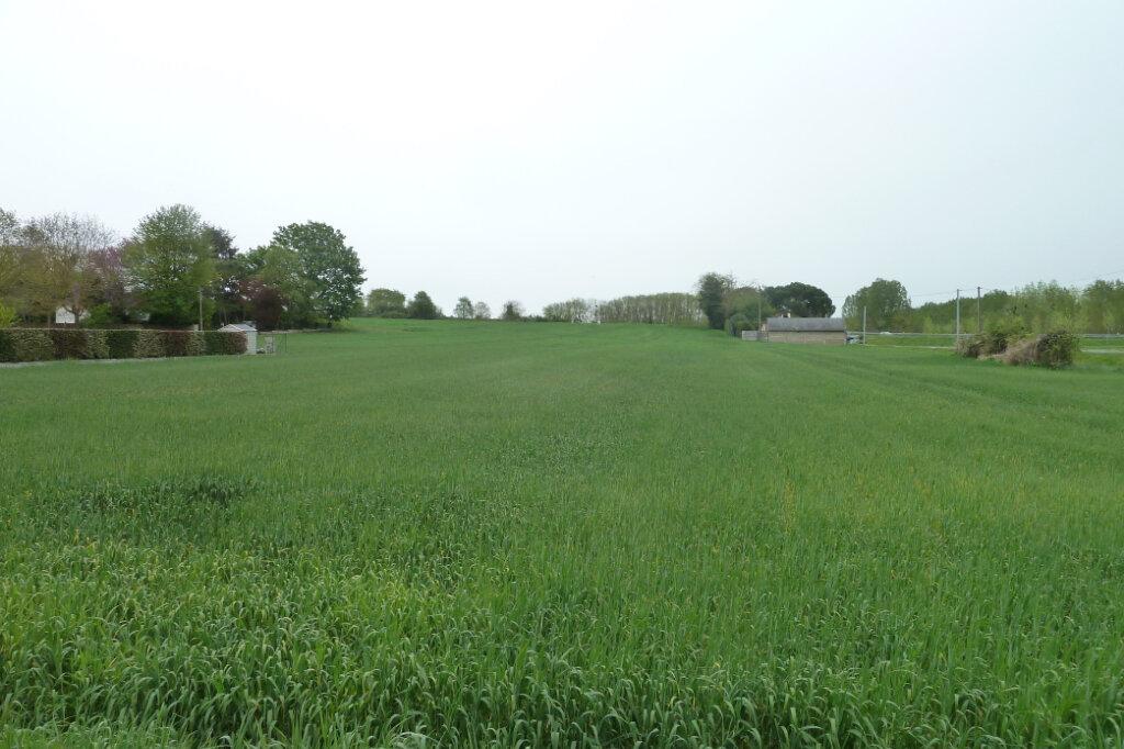 Terrain à vendre 0 1599m2 à Noyers-sur-Cher vignette-1