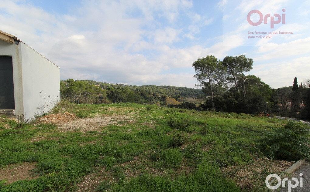 Terrain à vendre 0 265m2 à Trans-en-Provence vignette-3