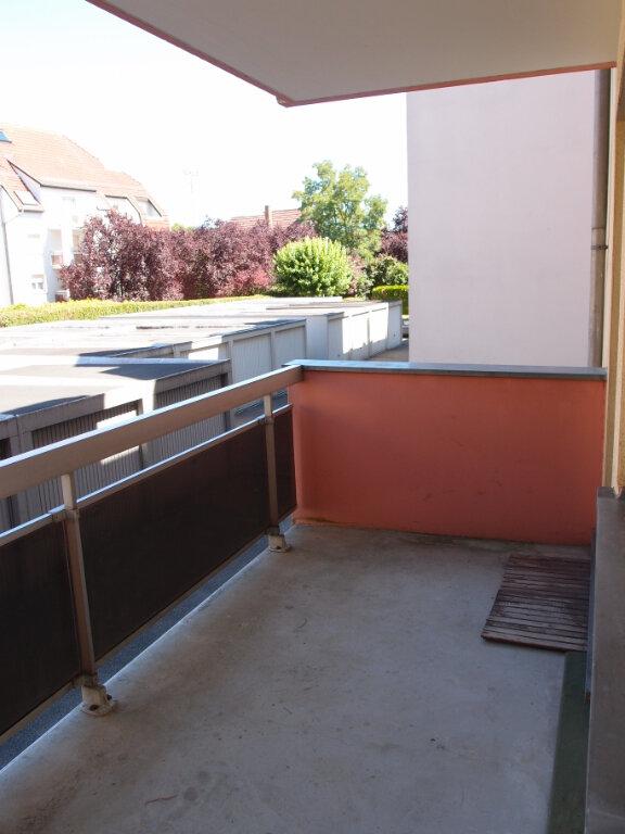 Appartement à louer 1 26.31m2 à Illkirch-Graffenstaden vignette-3