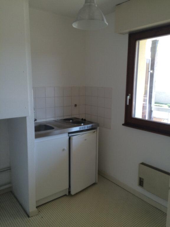 Appartement à louer 1 26.31m2 à Illkirch-Graffenstaden vignette-5