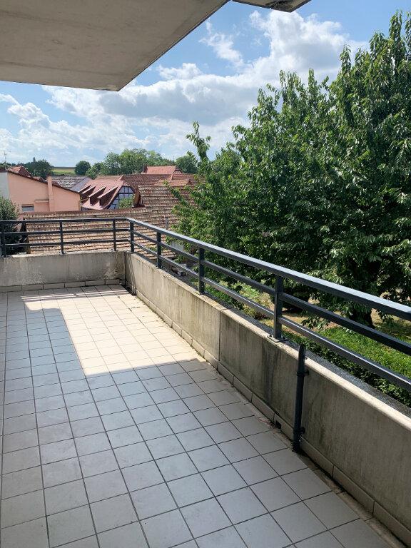 Appartement à louer 3 75m2 à Eckwersheim vignette-6