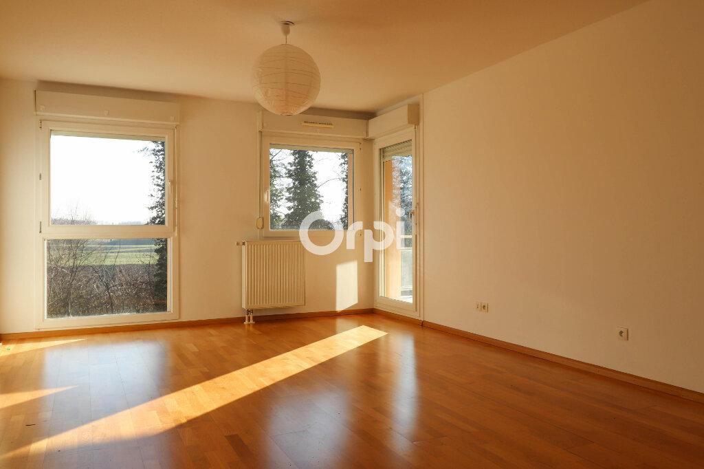 Appartement à louer 2 52.25m2 à Strasbourg vignette-1