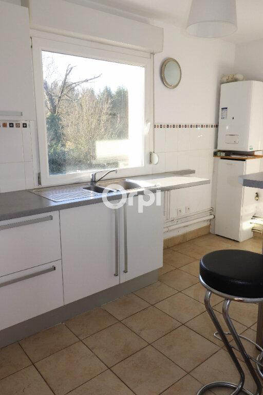 Appartement à louer 2 52.25m2 à Strasbourg vignette-2