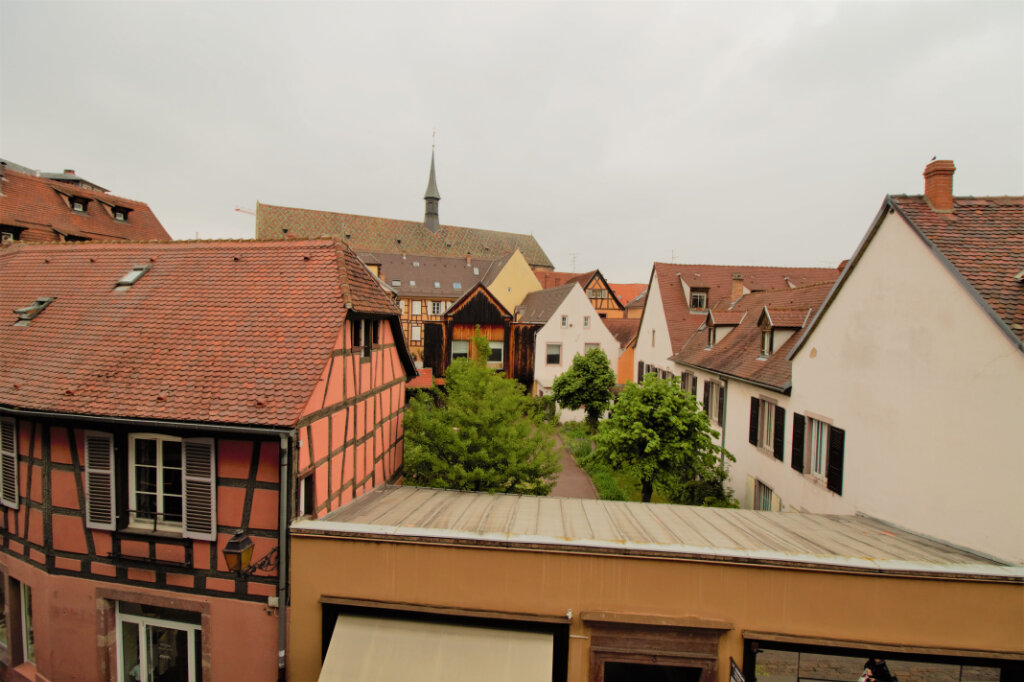 Appartement à louer 3 110m2 à Colmar vignette-5