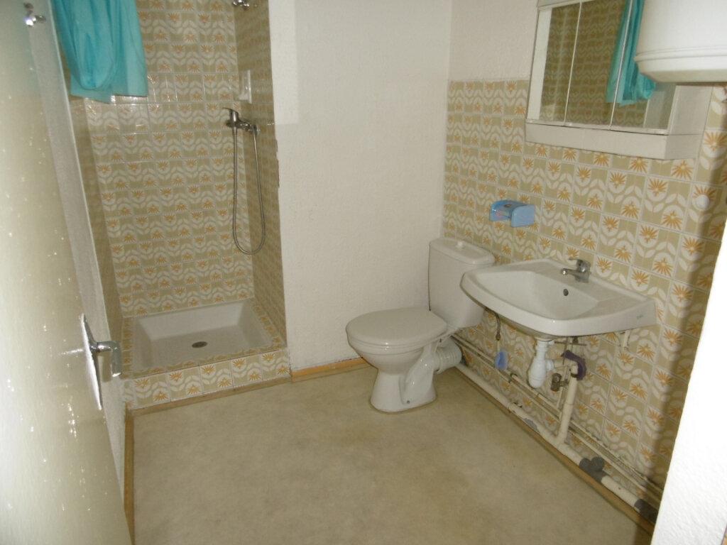 Appartement à louer 1 27m2 à Montpellier vignette-5