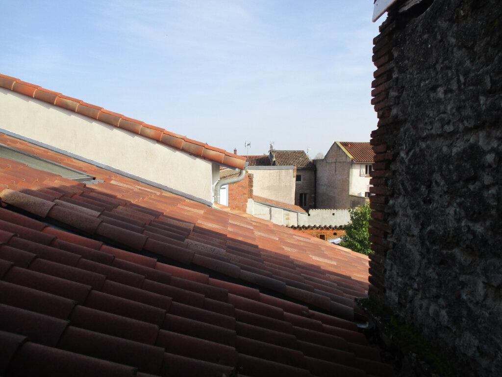Appartement à louer 2 47m2 à Saint-Sulpice-sur-Lèze vignette-5