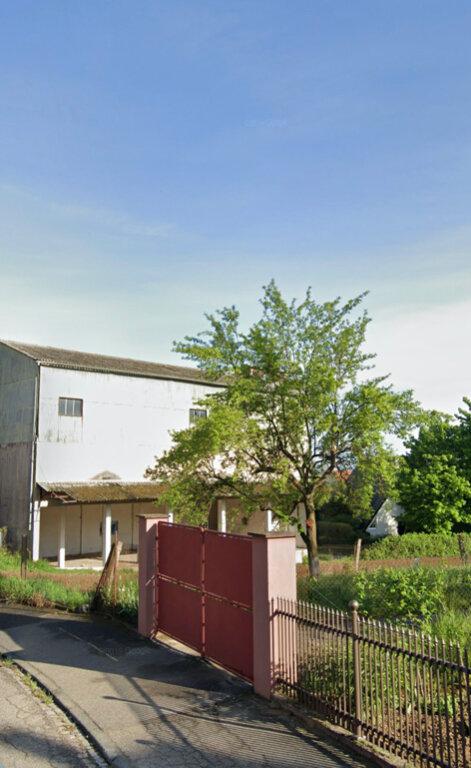 Terrain à vendre 0 3300m2 à Donnenheim vignette-3