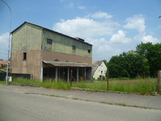 Terrain à vendre 0 3300m2 à Donnenheim vignette-6