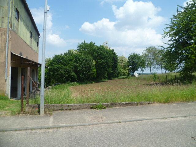 Terrain à vendre 0 3300m2 à Donnenheim vignette-7