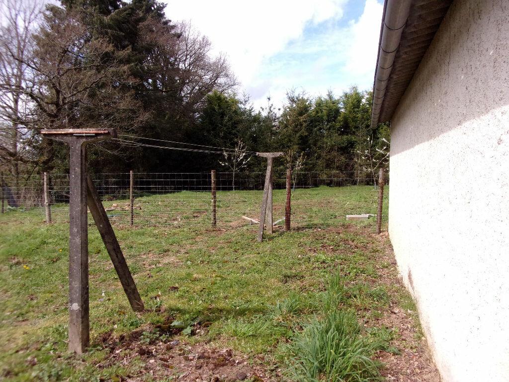 Maison à louer 3 75m2 à Brigueuil vignette-6