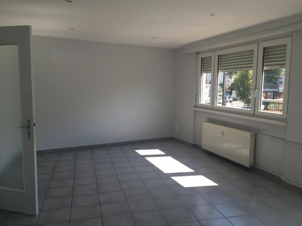 Appartement à louer 2 49.16m2 à Strasbourg vignette-1
