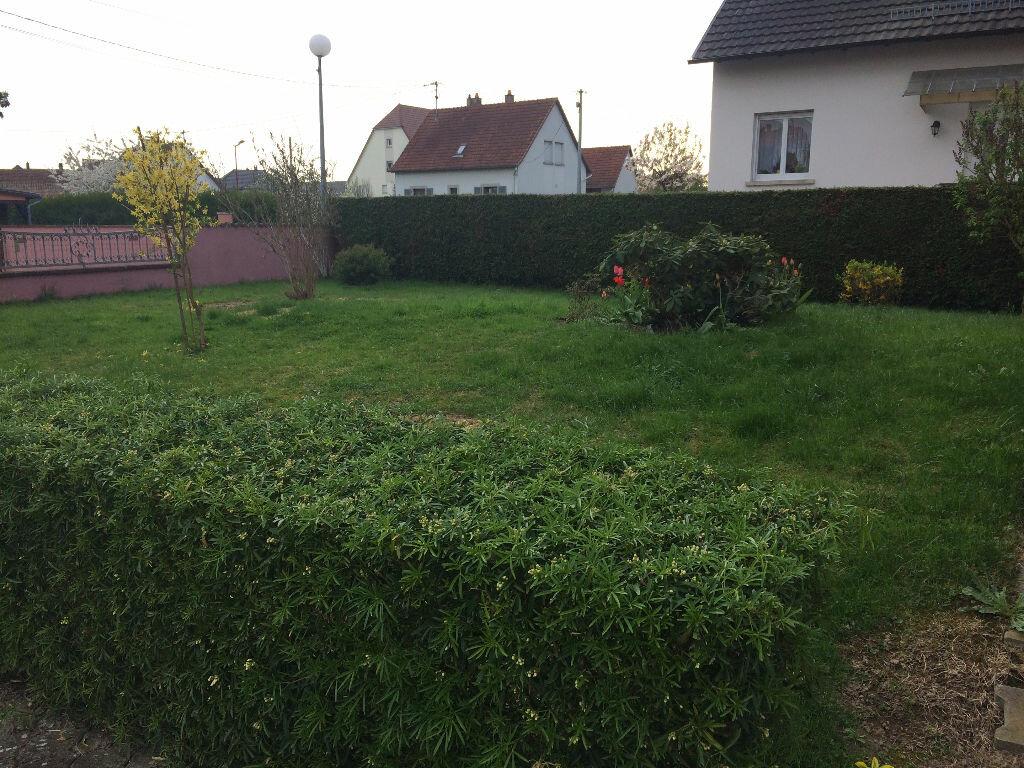 Appartement à louer 3 71.78m2 à Plobsheim vignette-11