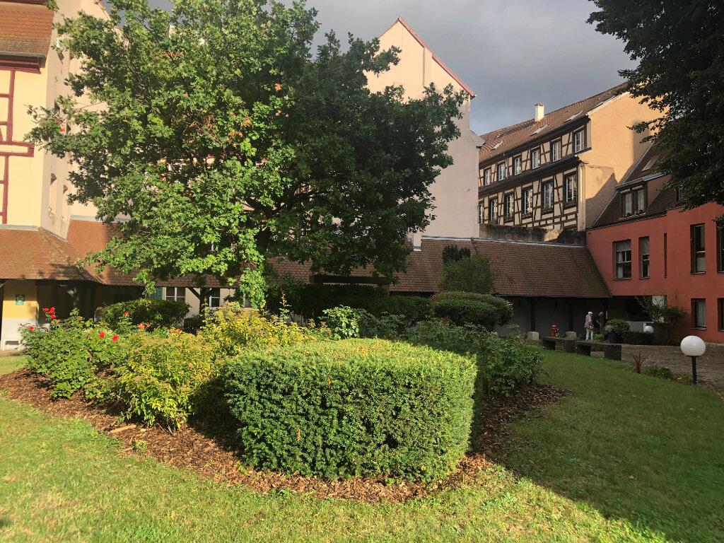 Appartement à louer 2 61.5m2 à Strasbourg vignette-7