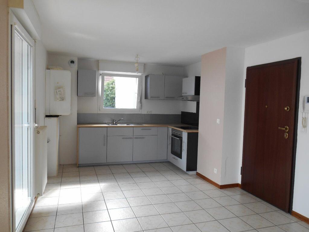 Appartement à louer 3 57.32m2 à Erstein vignette-2