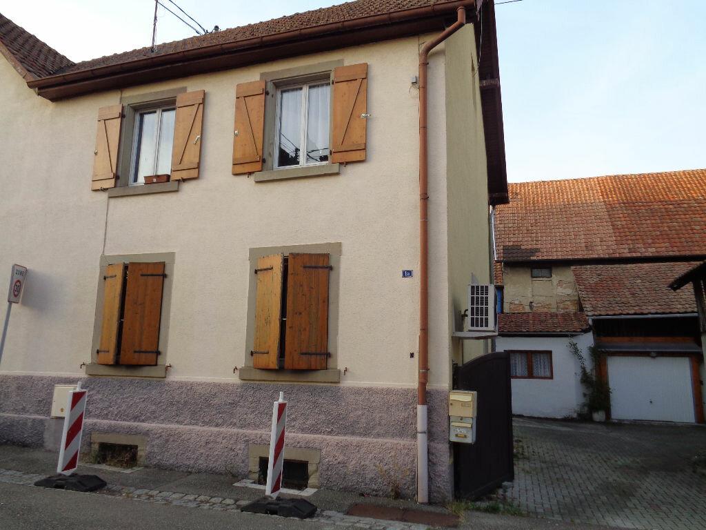 Appartement à louer 2 47.16m2 à Marckolsheim vignette-1