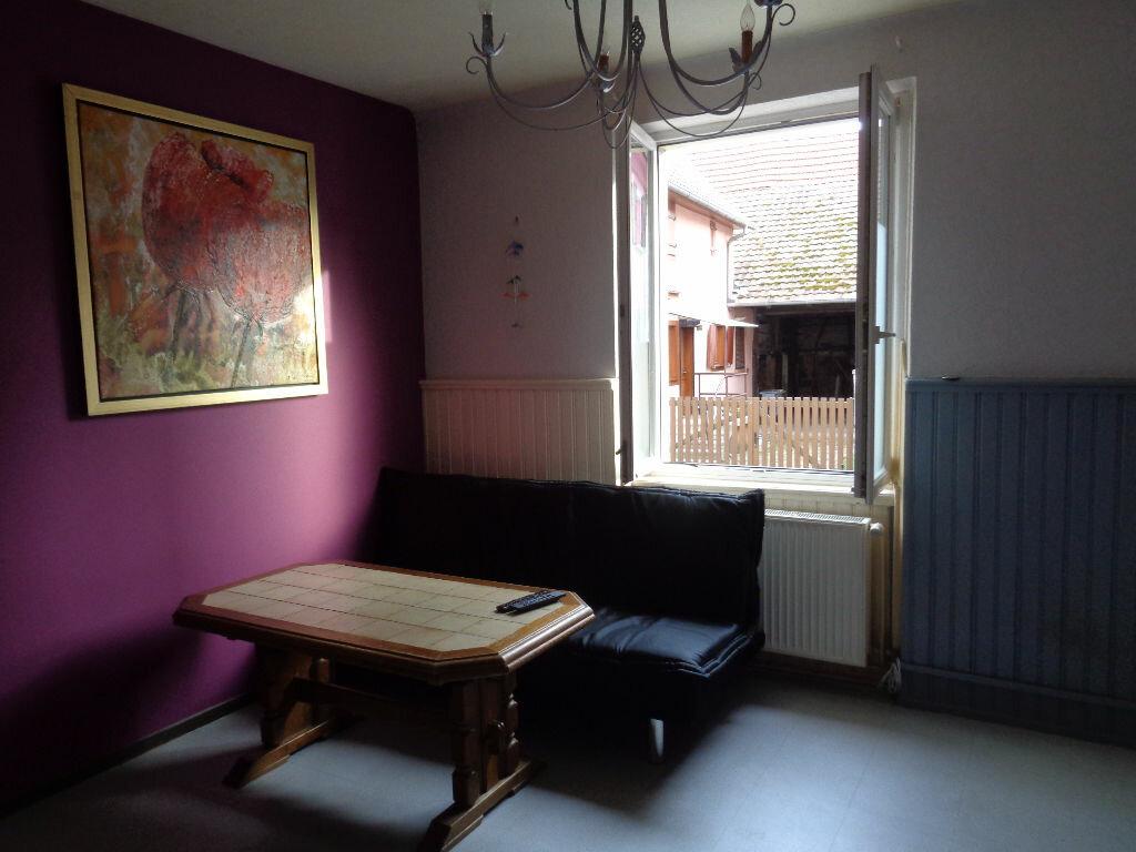 Appartement à louer 2 47.16m2 à Marckolsheim vignette-3