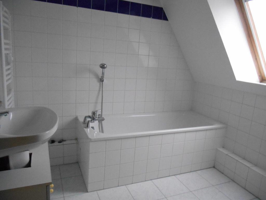 Appartement à louer 3 63m2 à Erstein vignette-5
