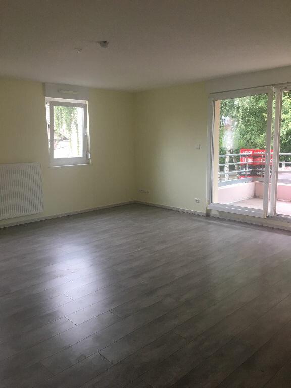 Appartement à louer 2 53m2 à Matzenheim vignette-1