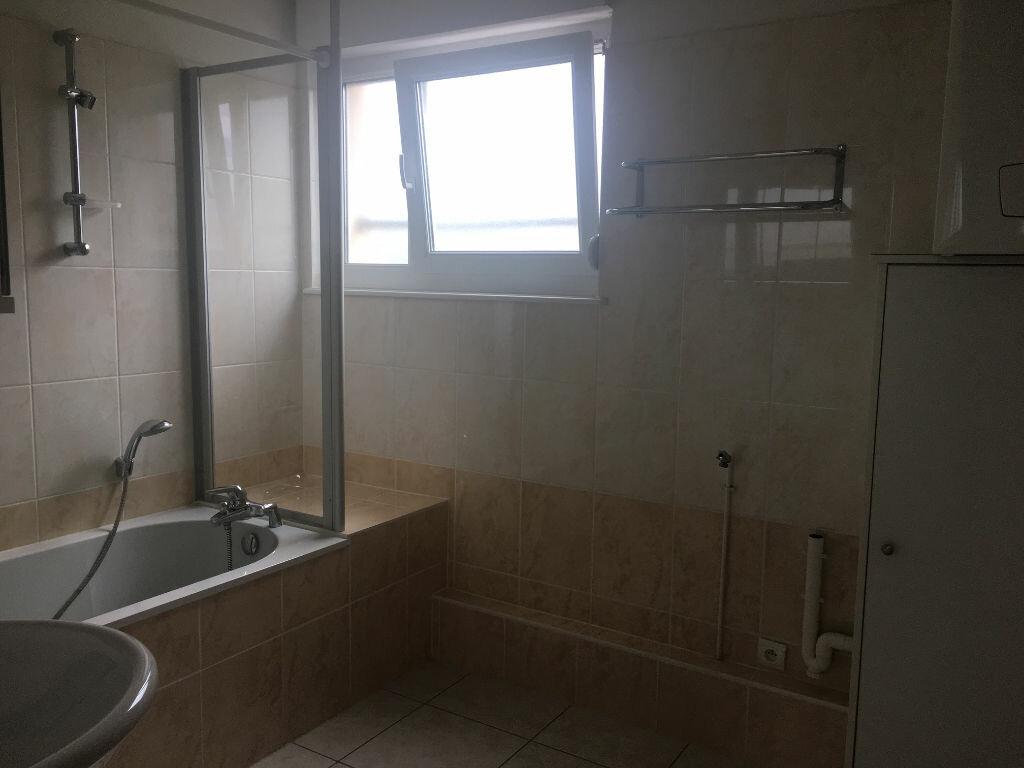 Appartement à louer 2 53m2 à Matzenheim vignette-4