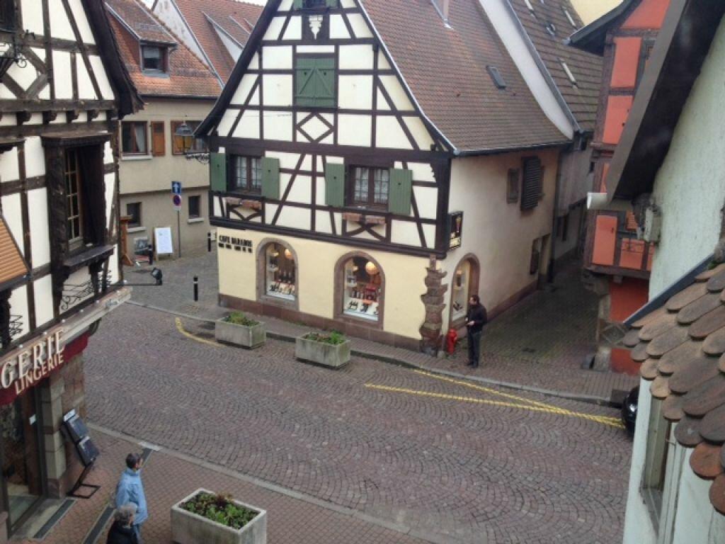 Appartement à louer 1 33.98m2 à Obernai vignette-2
