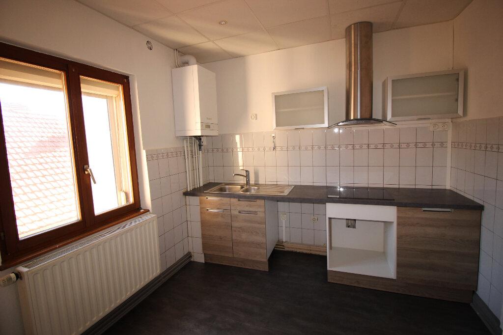 Appartement à louer 3 55m2 à Schiltigheim vignette-1